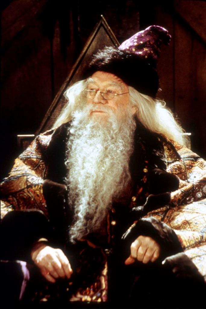 Alvo Dumbledore - Harry Potter