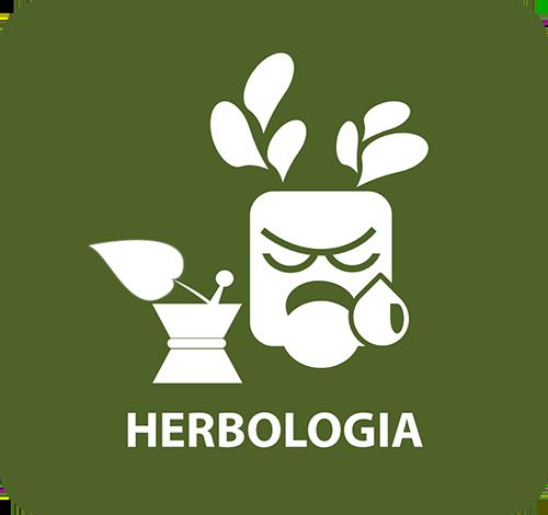 hebologia-1
