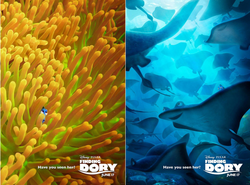 finding-dory-855x633