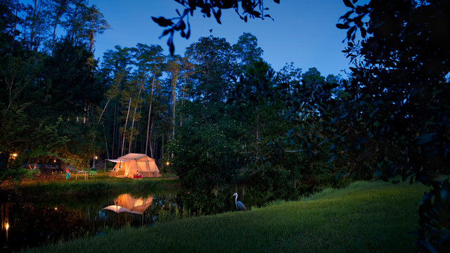 campsites-at-fort-wilderness-resort-gallery00
